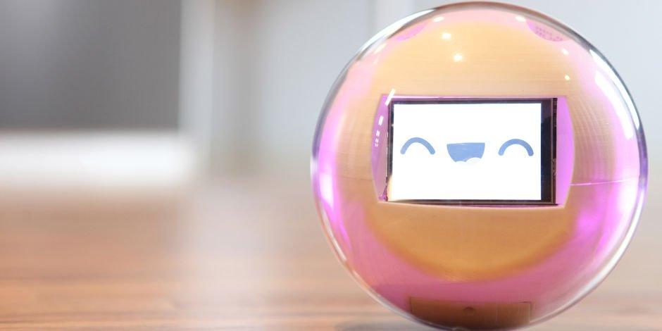 Lekaou le robot multi-sensoriel : du redressement judiciaire au rachat